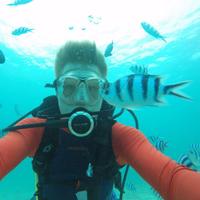 Christian Drerup diving