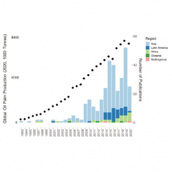 Both oil palm production and number of publications have increased greatly in the last decade across all regions.