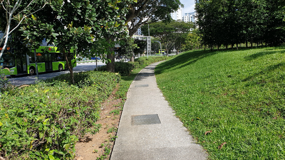 An example of a Nature Way next to the road
