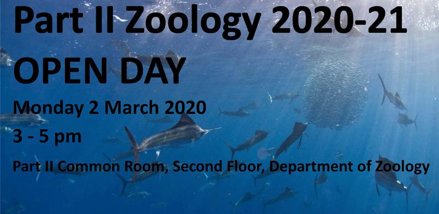 Part II Zoology Open Day, 2 March 3-5pm, Part II Zoology Common Room.