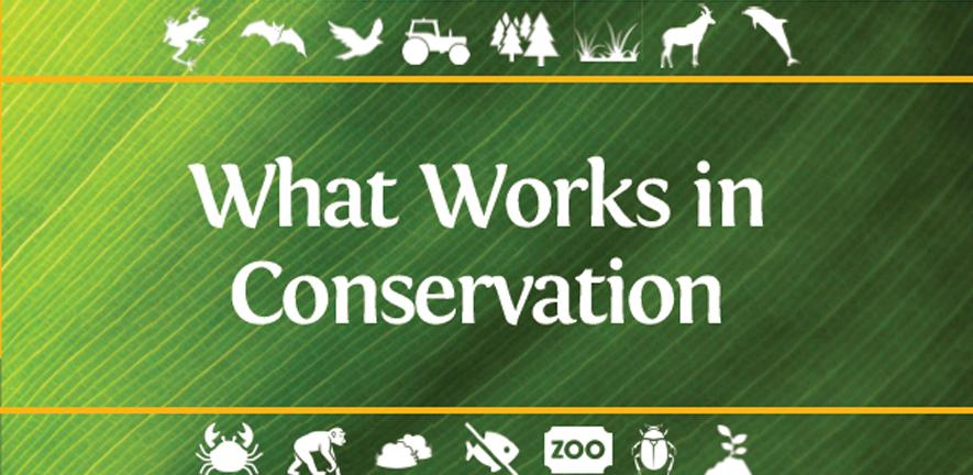 What Works in Conservation 2021, front cover
