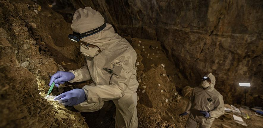 Scientists in full PPE collecting specimens from a cave in Mexico